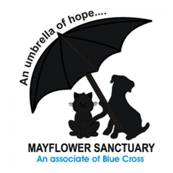 Mayflower Sanctuary eCards