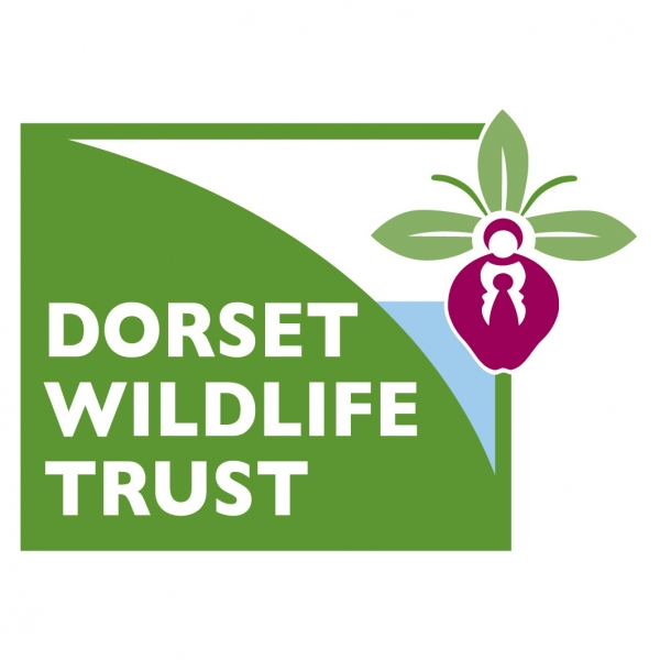 Dorset Wildlife Trust eCards