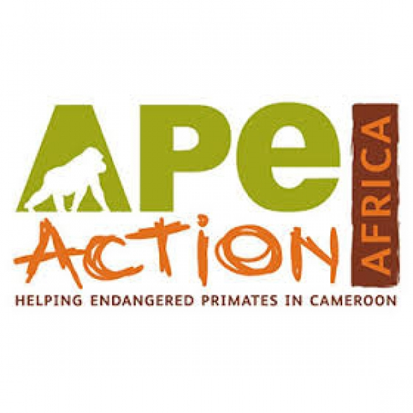 Ape Action Africa eCards