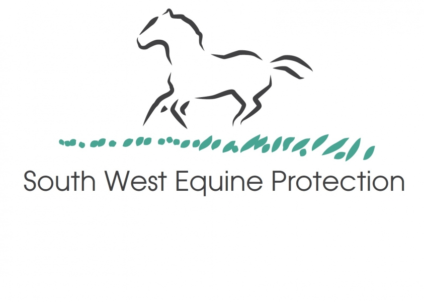 South West Equine Protection eCards