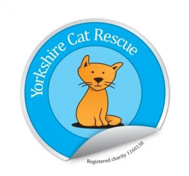 Yorkshire Cat Rescue eCards