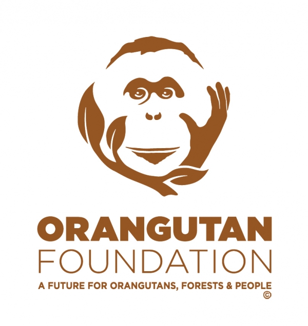 Orangutan Foundation eCards
