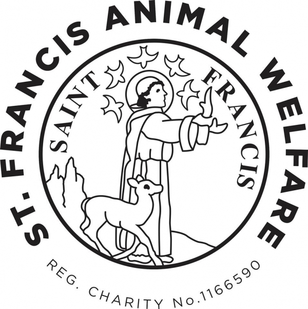 St Francis Animal Welfare eCards