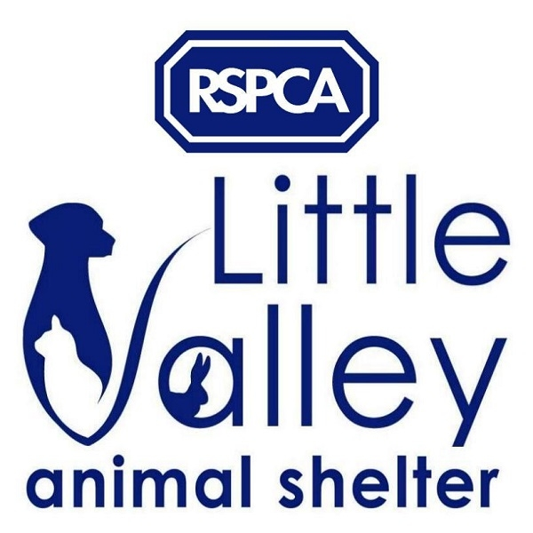 RSPCA Little Valley Animal Shelter eCards