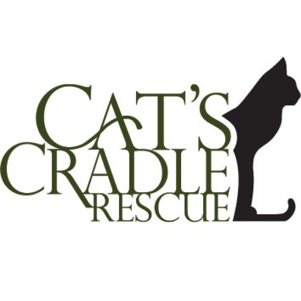 Cat's Cradle Rescue eCards