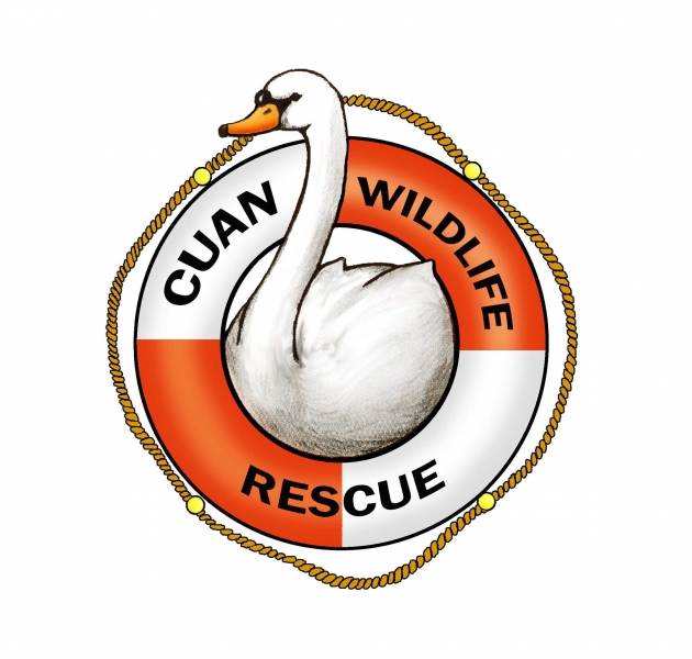 Cuan Wildlife Rescue eCards