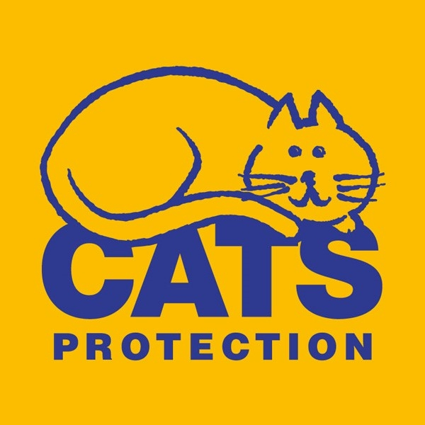 Cats Protection eCards