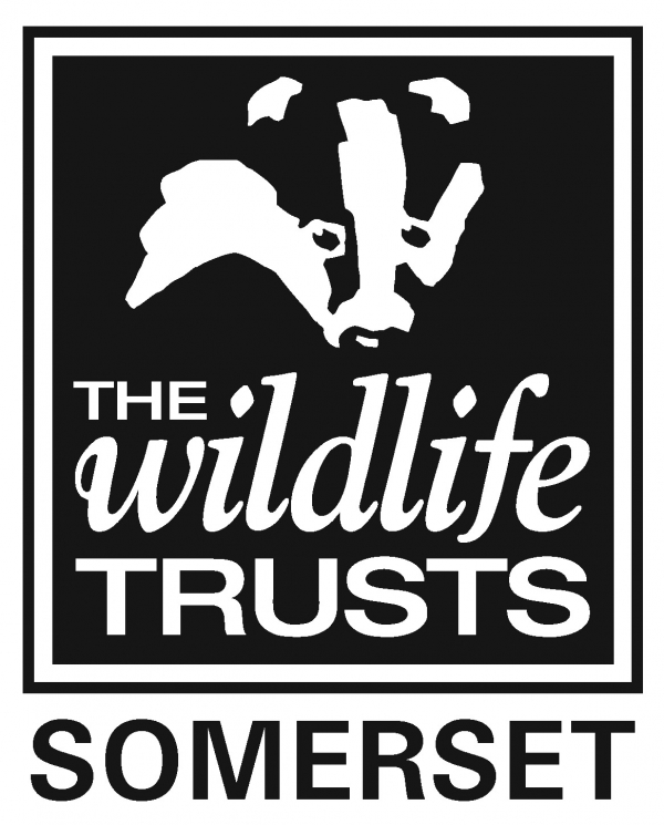 Somerset Wildlife Trust eCards