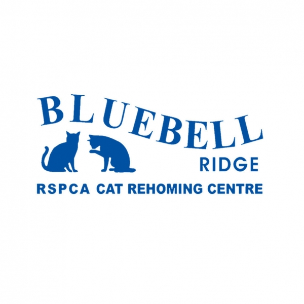 RSPCA Sussex East & Hastings Branch (Bluebell Ridge) eCards