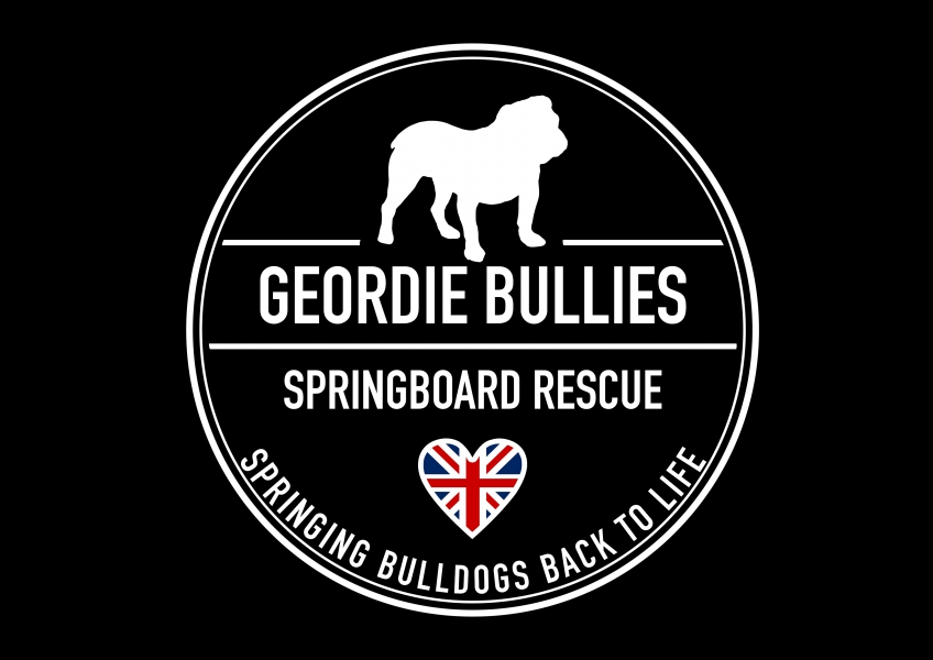 Geordie Bullies Springboard rescue eCards