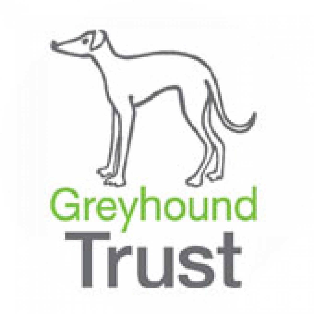 Greyhound Trust eCards