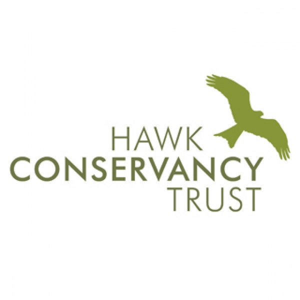 Hawk Conservancy Trust eCards