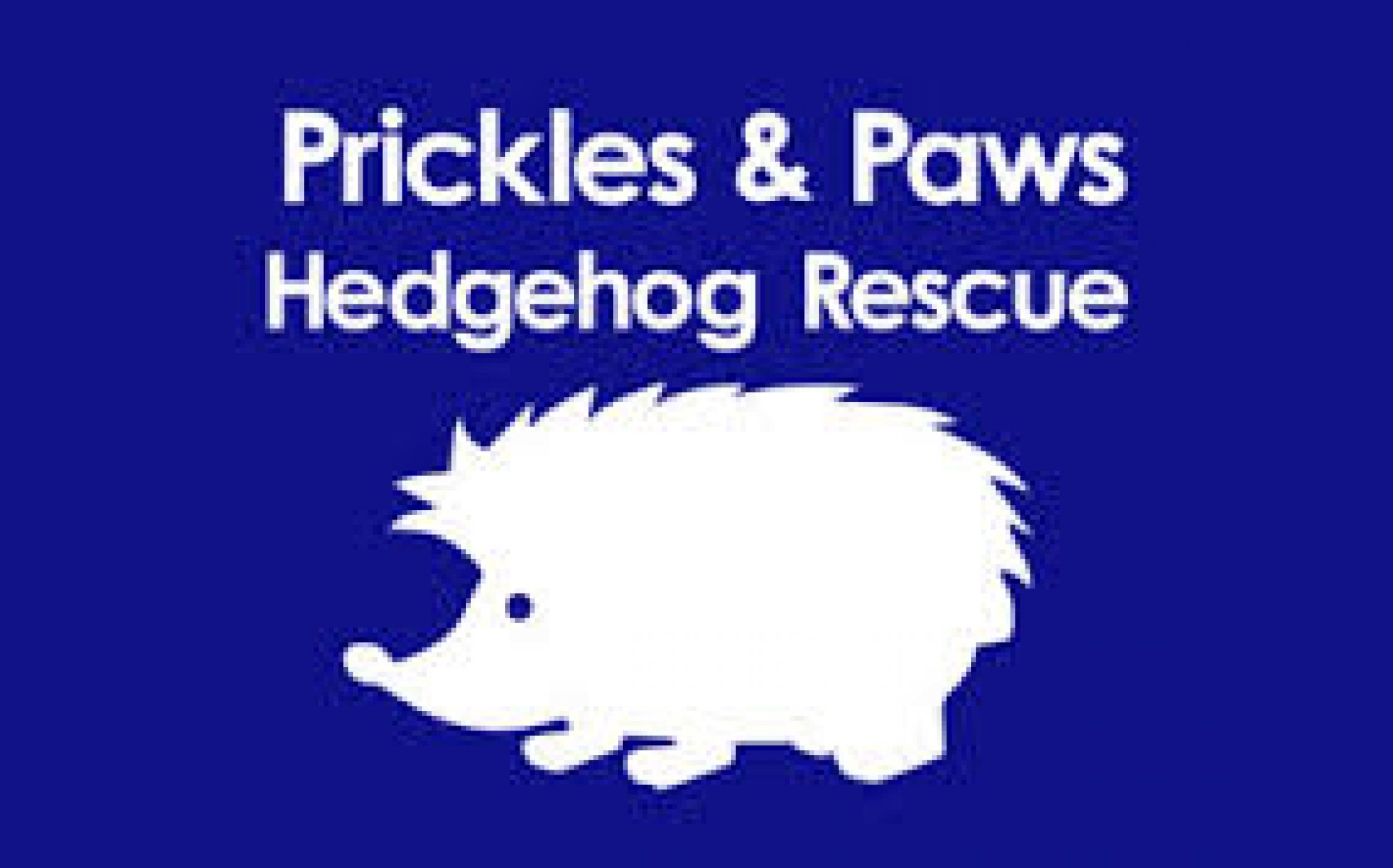 Prickles and Paws Hedgehog Rescue eCards