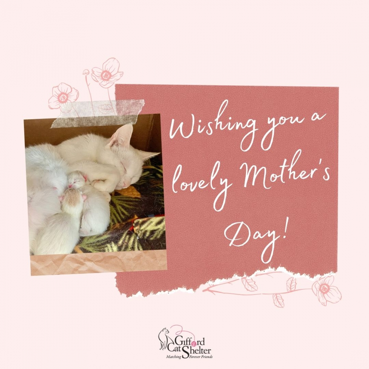 Send mom a Mother's Day E-Card eCards