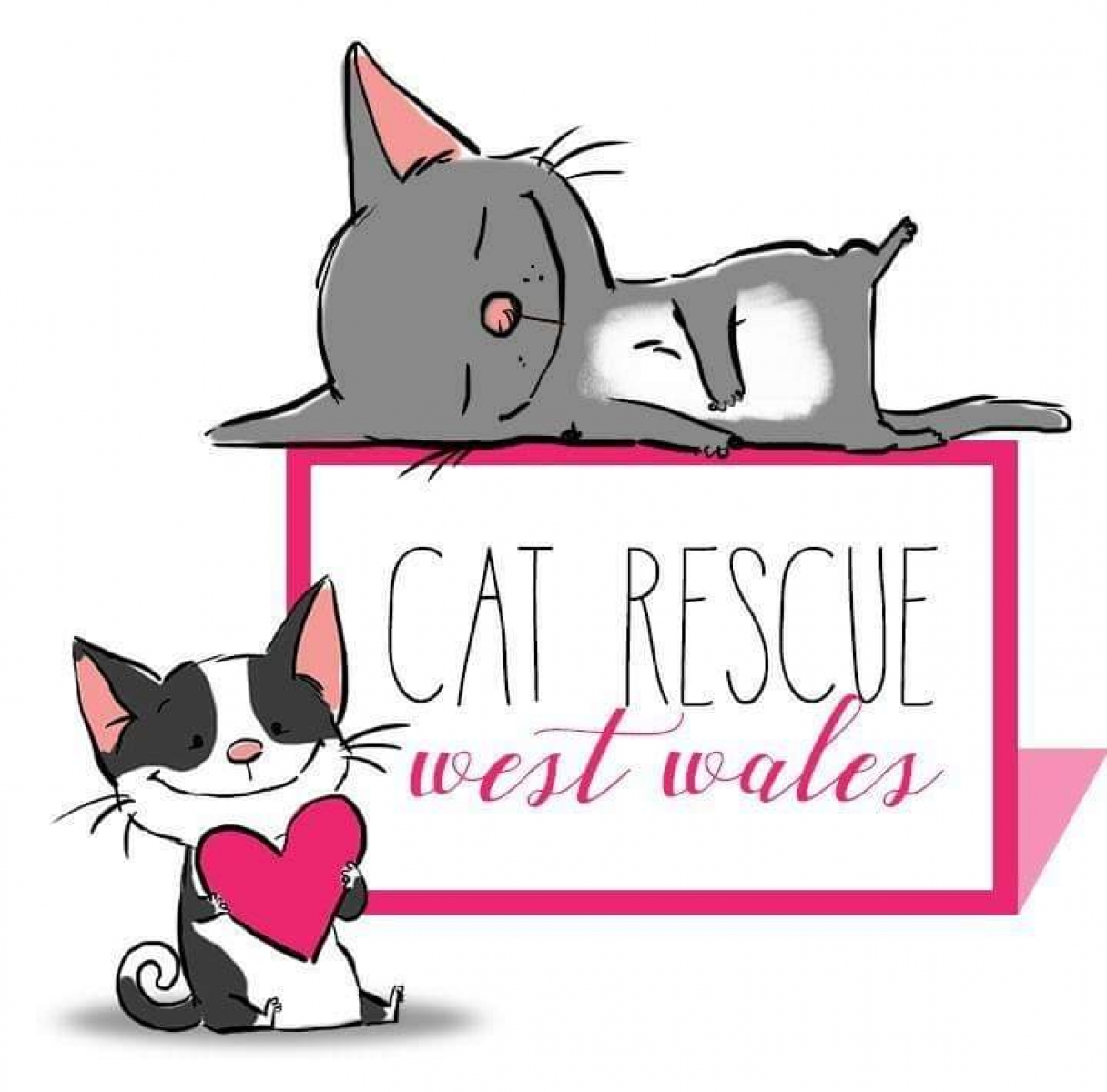 Cat Rescue West Wales eCards