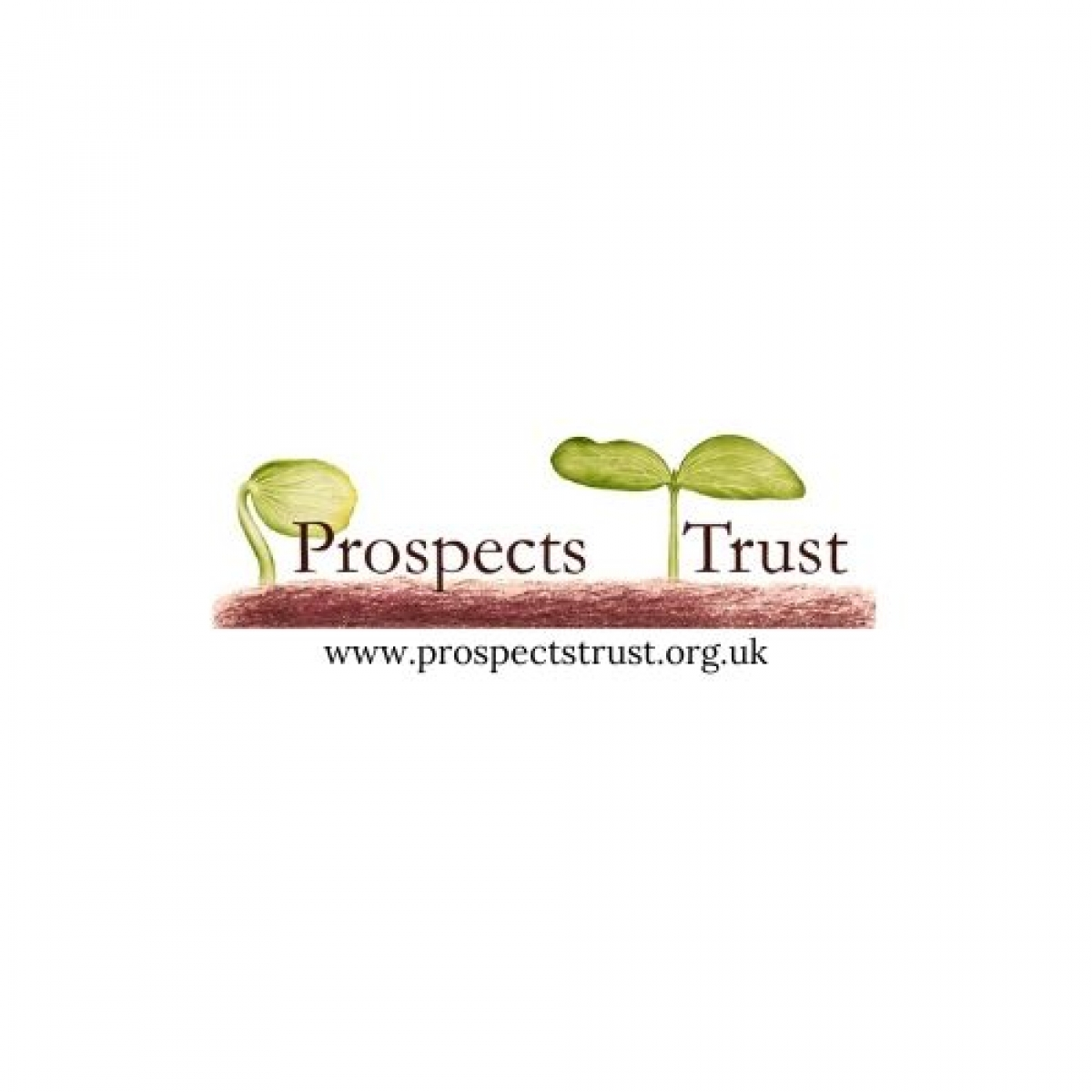 The Prospects Trust eCards