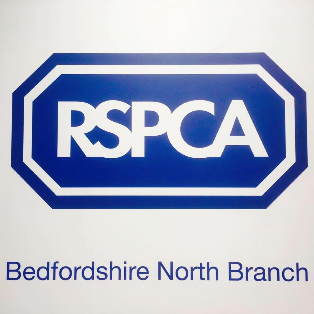 Rspca Bedfordshire North Branch eCards